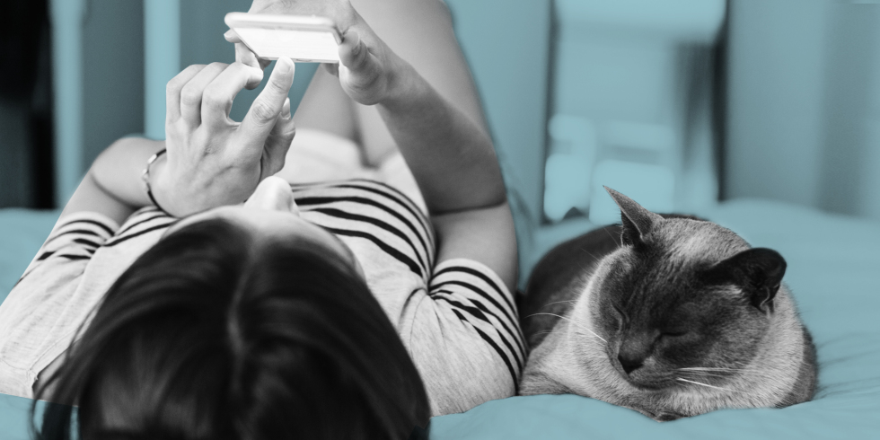 Girl laying on bed beside cat while texting