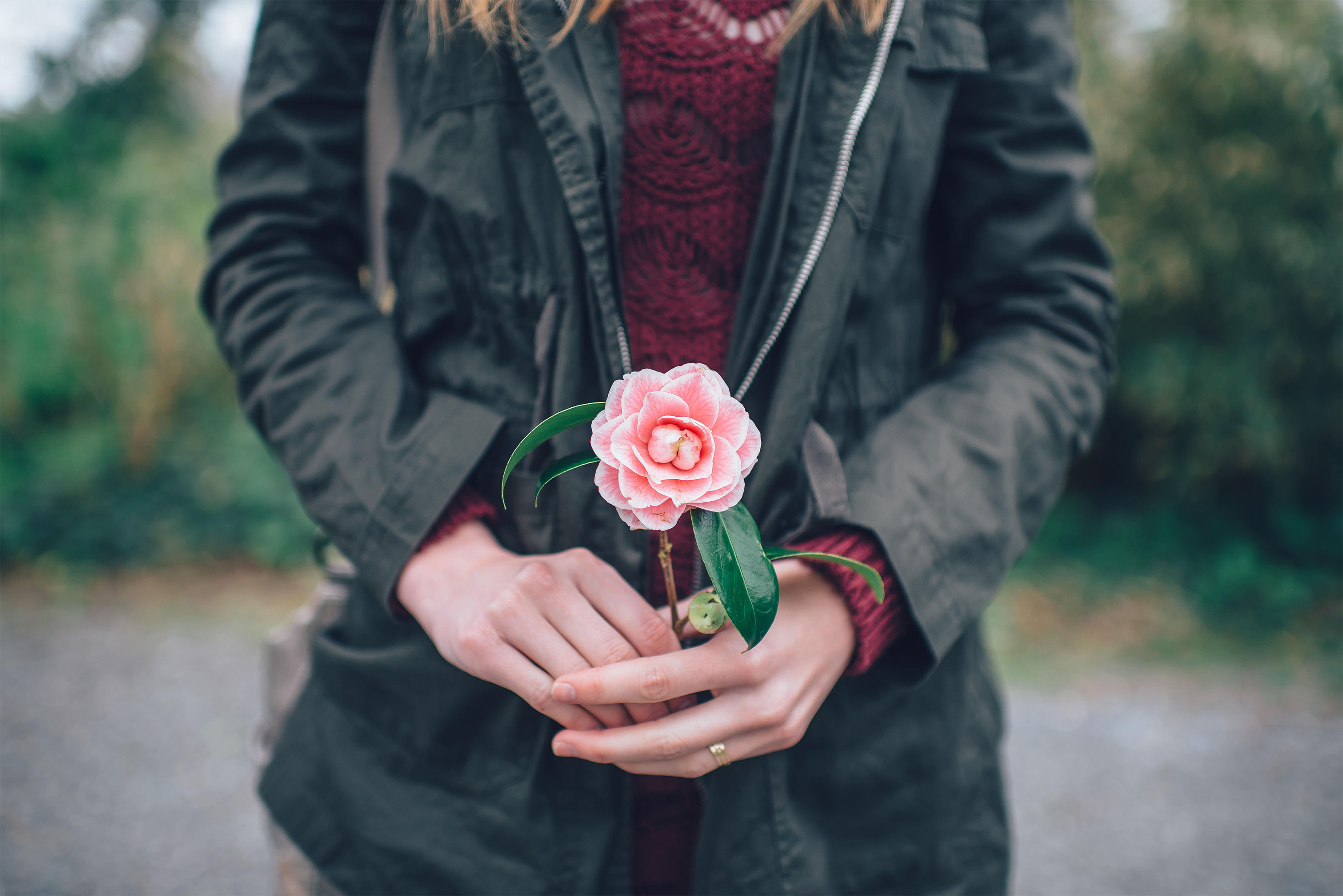 Woman holding a pink rose